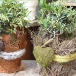 individuell_gestaltete_Pflanzen